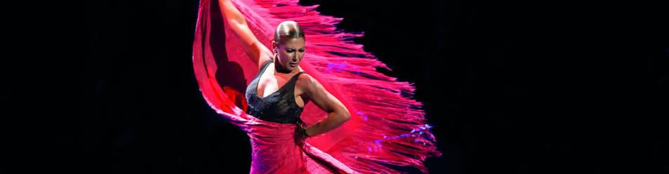La bailaora, en un momento del espectáculo Sombras.