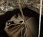 Recuperados diez cadáveres de la Guerra Civil en una sima de Urbasa