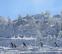Paisaje: invierno y desierto