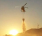 Navarra ha registrado cerca de 700 incendios forestales en lo que va de año
