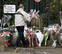 Francia llora a Hallyday, el ídolo que llevó el rock al país de la 'chanson'