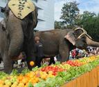 Un desayuno de récord para tres elefantes del Gran Circo Mundial