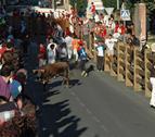El tercer encierro lo correrán los toros de Los Bayones de Cáceres