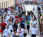Los Domecq  protagonizan el encierro de este sábado en Tudela