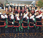 Pamplona recibirá a los Reyes con repique de campanas