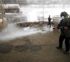 Alerta en el este de China por el aumento de casos de gripe aviar