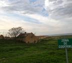 Impuesta la mayor pena de cárcel de España por envenenar aves rapaces