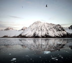 El nivel del mar podría subir más de un metro en 2100 por el calentamiento