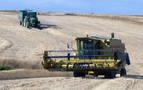 Récord de producción de cereales en las zonas húmedas de Navarra