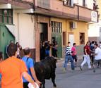 Dos astados, en el penúltimo toro con soga de Lodosa