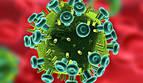 El tratamiento inmediato del VIH reduce riesgos en un 57%