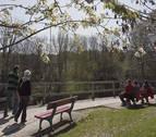 El cierzo soplará este fin de semana en Navarra y el tiempo mejorará el domingo