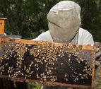 Ayudas de 60.000 euros a la producción y comercialización de productos de la apicultura