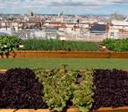La azotea del hotel Wellington, en la calle Velázquez de Madrid, con las variedades de lechuga en primer plano, y las vistas de la ciudad al fondo