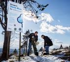 Gobierno de Navarra y VW plantan un bosque de 5.000 árboles en Añorbe