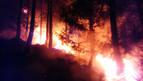 Dos hectáreas de pino y matorral afectadas por un incendio en Belascoáin