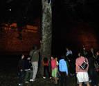 Lumbier acoge este sábado una actividad de seguimiento de murciélagos