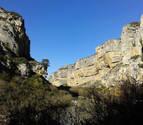 Observación de aves, rutas y visitas guiadas en Navarra para este verano