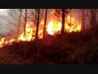 El incendio de este fin de semana en Igantzi afectó a 250 hectáreas