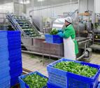 La producción industrial aumentó en noviembre en Navarra un 24,9%