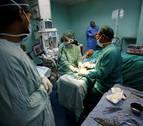 Investigan un nuevo tratamiento para pacientes con cáncer de ovario