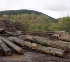 Convocadas ayudas para empresas forestales y de productos silvícolas