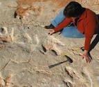 Hallan en Portugal 700 huellas de dinosaurios que comían peces con marea baja