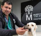 El perro Trufo recoge en Ollogoyen la primera trufa de la temporada