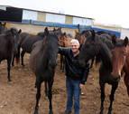 Un caballo ribero, campeón de España