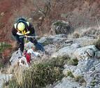 Movilizan al helicóptero para rescatar a un perro en Lesaka