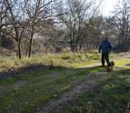 Andosilla va a restaurar El Bosquecillo junto al Ega