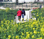 Fin de semana de ambiente primaveral en Navarra