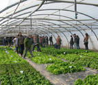 La producción ecológica va en aumento en Navarra, con más de 83.000 hectáreas