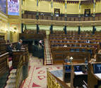 El Congreso acuerda modificar la 'ley mordaza' con la oposición del PP