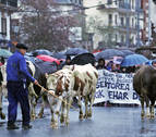 Cientos de personas defienden el sector lácteo en Elizondo