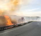 Sangüesa alerta ante los incendios por la quema de pelusas de chopo