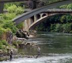 La Asociación Forestal de Navarra  aborda los retos forestales en el Bidasoa