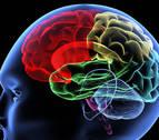 El cerebro es más eficiente si se toca un instrumento o se es bilingüe