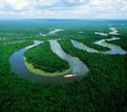 El mar inundó la Amazonía en la antigüedad dos veces