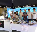 Alumnado del CIP Tafalla crea y desarrolla una empresa en el aula