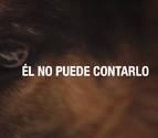Detenido en Pontevedra por maltratar 15 perros