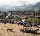 Jornadas sobre el pastoreo por el 50 aniversario del 'Artzai Eguna' en Uharte Arakil