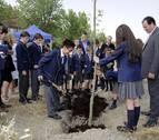 El British School inicia la plantación de un bosque en Gorraiz
