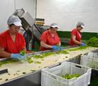 Conservas Rubio invierte 300.000 euros en ampliar la planta de Cárcar