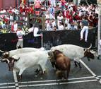 Los Cebada Gago, una ganadería con pura sangre para el primer encierro