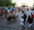 Peligroso y lento cuarto encierro de Tudela por un toro rezagado