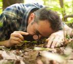 La naturaleza fascina 'en un metro de bosque'