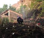 El fuego de Falces se controló de noche y afectó a 5 hectáreas de pino
