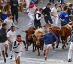 Novillos y mozos se baten en Estella en un sprint a 18,4 kilómetros por hora