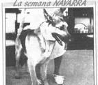 'Bostik', el perro que llegó a Tafalla desde San Sebastián para buscar a sus dueños